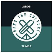 Thumbnail for the Los Lobos - Tumba link, provided by host site