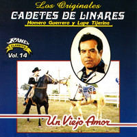 Thumbnail for the Los Cadetes de Linares - Un Viejo Amor link, provided by host site