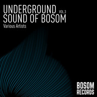 Thumbnail for the Various Artists - Underground Sound Of Bosom, Vol. 3 link, provided by host site