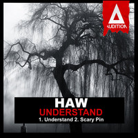 Thumbnail for the HAW - Understand link, provided by host site