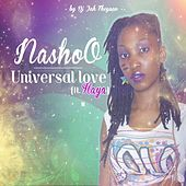 Thumbnail for the Nashoo - Universal Love (Spaceship Chronicles 2013) link, provided by host site