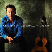 Thumbnail for the Ottmar Liebert + Luna Negra - Untitled (La Noche) link, provided by host site