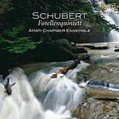Thumbnail for the Amati Chamber Ensemble - V. Allegro giusto link, provided by host site