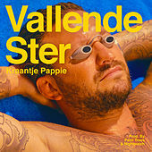 Thumbnail for the Kraantje Pappie - Vallende Ster link, provided by host site