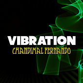 Thumbnail for the Chandimal Fernando - Vibration link, provided by host site