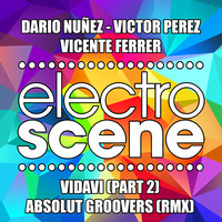 Thumbnail for the Dario Nunez - Vidavi, Pt. 2 (Absolut Groovers Mix) link, provided by host site