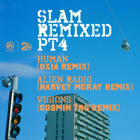 Thumbnail for the Slam - Visions - Cosmin TRG Remix link, provided by host site