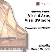 Thumbnail for the Marco Velocci - Vissi d'arte, vissi d'amore (Transcr. for Piano Solo) link, provided by host site