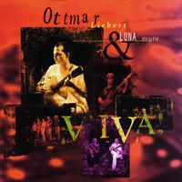 Thumbnail for the Ottmar Liebert + Luna Negra - Viva! link, provided by host site