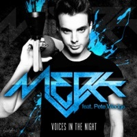 Thumbnail for the Merk - Voices In the Night link, provided by host site