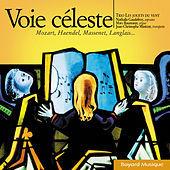 Thumbnail for the Trio Les jouets du vent - Voie céleste link, provided by host site