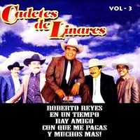 Thumbnail for the Los Cadetes de Linares - Vol. 3 link, provided by host site
