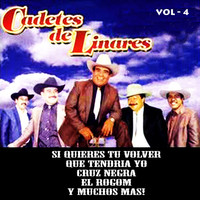Thumbnail for the Los Cadetes de Linares - Vol. 4 link, provided by host site