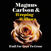 Thumbnail for the Magnus Carlson - Wait for Love to Grow link, provided by host site