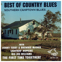 Thumbnail for the Sonny Terry - Walkin' Blues link, provided by host site