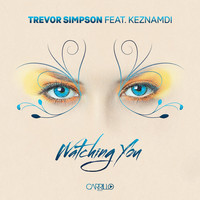 Thumbnail for the Trevor Simpson - Watching You - Radio Mix link, provided by host site