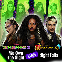 Thumbnail for the Chandler Kinney - We Own the Night/Night Falls Mashup link, provided by host site