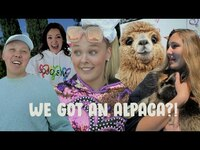 Thumbnail for the JoJo Siwa - WE PLAYED WITH AN ALPACA!! link, provided by host site