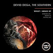 Thumbnail for the Devid Degà - What I Mean link, provided by host site