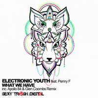 Thumbnail for the Electronic Youth - What We Have link, provided by host site