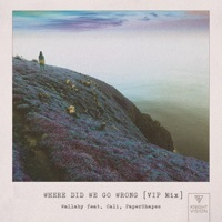 Thumbnail for the Wallaby - Where Did We Go Wrong [VIP MIX] link, provided by host site