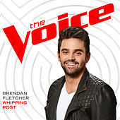 Thumbnail for the Brendan Fletcher - Whipping Post (The Voice Performance) link, provided by host site