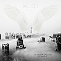 Thumbnail for the the Polish Ambassador - Wings link, provided by host site