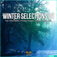 Thumbnail for the Piramex - Winter Selections 01 link, provided by host site