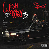 Thumbnail for the YFN Lucci - Wish Me Well 3 link, provided by host site