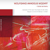 Thumbnail for the I Solisti Del Vento - Wolfgang Amadeus Mozart link, provided by host site