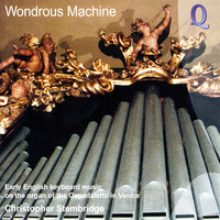 Thumbnail for the Christopher Stembridge - Wondrous Machine link, provided by host site