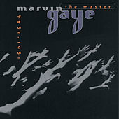Thumbnail for the Marvin Gaye - You're The One For Me link, provided by host site