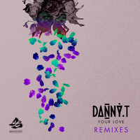 Thumbnail for the Danny T - Your Love (Remixes) link, provided by host site